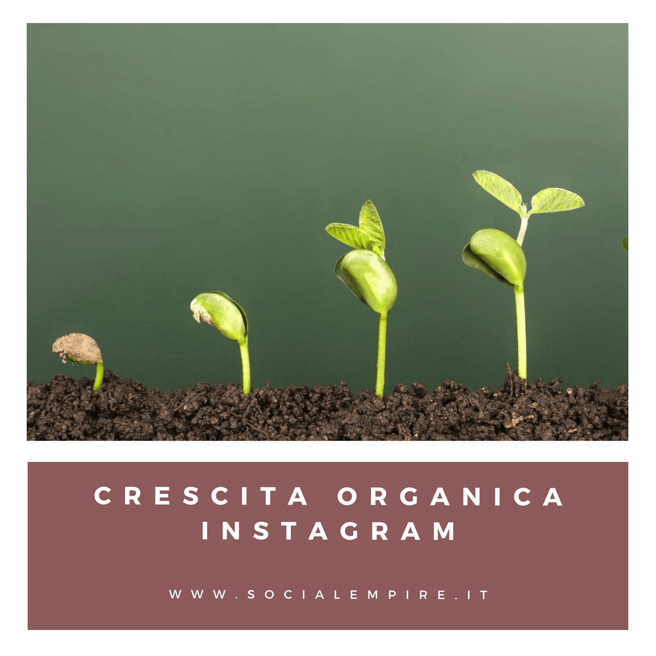 Crescita Organica Instagram